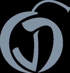 CVD Logomark Secondary